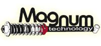 Magnum Technology Støddæmper, Varenummer AGW057MT, OE Nummer 3C0413031N