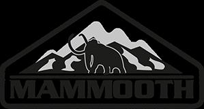 MAMMOOTH Wasch-Reiniger und Außenpflege
