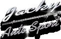 Repuestos coches JACKY en línea