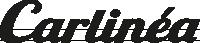 Mata na szybę Carlinea 463546 do VW, OPEL, AUDI, FORD