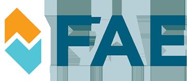 FAE 1E00-43-701 B