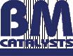 BM CATALYSTS BM50255