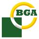 BGA DP0366 Polea, cigüeñal desacoplado para MAZDA, LAND ROVER, ROVER, MG, FSO