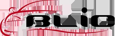 BLIC 3B1 857 538 B GRU