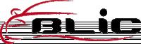 BLIC genuine AUDI A3 Electric window regulator