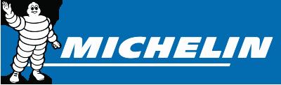 Michelin Teer- und Ölfleckentferner