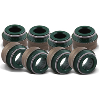 Valve stem seals 5 Saloon (F10)