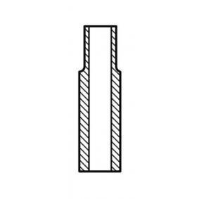 Ventilführung für CRAFTER 30-50 Kasten (2E_) 2.5TDI BJL Motorcode