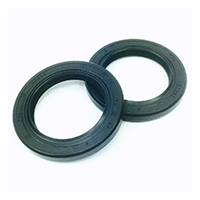 Seal Ring 0244 680
