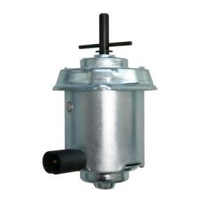 Electric Motor, radiator fan Seicento / 600 Hatchback (187_) 1.1 (187AXB, 187AXB1A, 187AXC1A02) for 176 B2.000 engine code