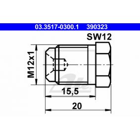 Wie man Verschlussschraube, Hauptbremszylinder am VW Lupo 6x1 1.2 TDI 3L wechselt – Schritt-für-Schritt-Anleitungen für die unkomplizierte Autoreparatur