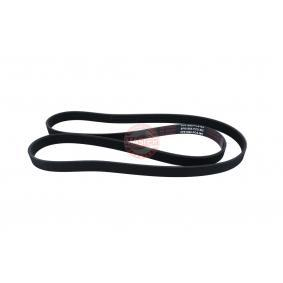 V-Ribbed Belts 6PK1660-PCS-MS OCTAVIA (1U2) 1.9 TDI MY 2006
