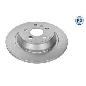 Bremsscheibe Bremsscheibendicke: 10,9mm, Lochanzahl: 5, Ø: 302mm mit OEM-Nummer 1864280