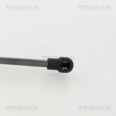 Tailgate Struts TRISCAN 871050260 expert knowledge