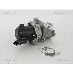 Ford Fiesta Mk6 1.4TDCi AGR Ventil TRISCAN 8813 28003 (1.4TDCi Diesel 2009 F6JD)