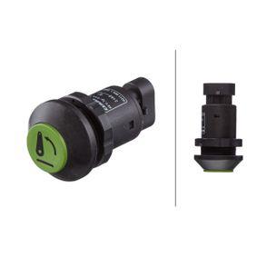 Bremsscheibe Bremsscheibendicke: 24mm, Ø: 263mm mit OEM-Nummer 54010