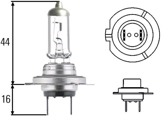 Glühlampe, Fernscheinwerfer 8GH 007 157-551 HELLA 8GH223498448 in Original Qualität