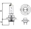 HELLA Scheinwerferlampe 8GH 007 157-551