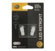 Light bulbs 500X (334_): 8GL178560601 HELLA