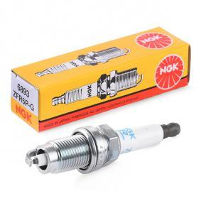 Spark Plug with OEM Number 101 905 617 R1