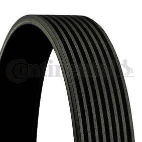 V-Ribbed Belts 8PK1310 EXTRA 3 (BL) 2.2 MZR CD MY 2012