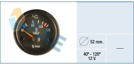 FAE  99560 Thermometer