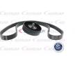 Poly v-belt kit ACKOJA 10590486 with v-ribbed belt pulley