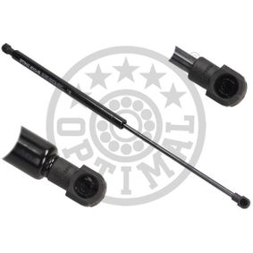 Gas Spring, boot- / cargo area AG-40085 PANDA (169) 1.2 MY 2020