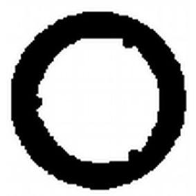 Dichtung, Abgasrohr mit OEM-Nummer 7H0 253 115 B