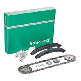 Polo 6R 1.2 Steuerkettensatz Borsehung B16296 (1.2 Benzin 2021 CGPB)