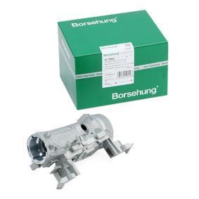 Borsehung B17963 експертни познания