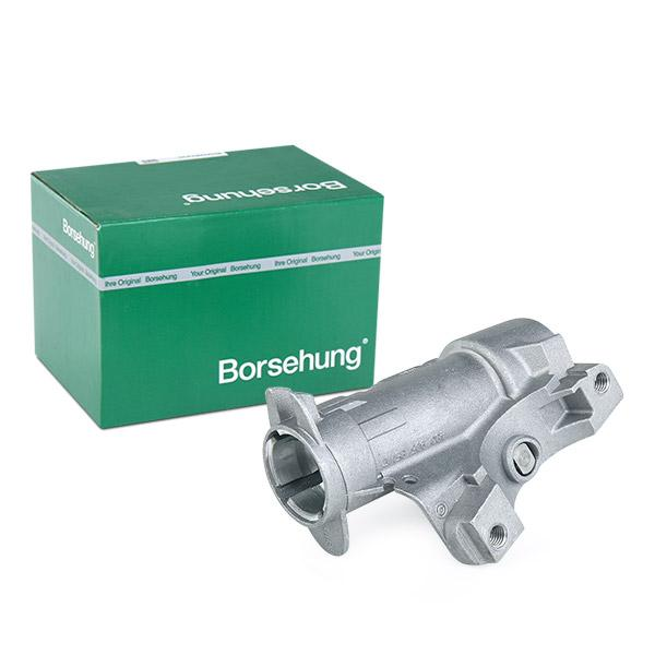 Steering Lock Borsehung B17983 expert knowledge