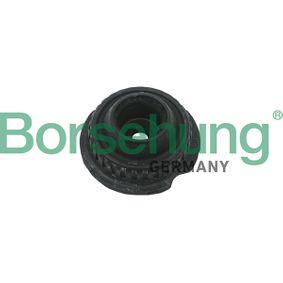 Passat B5 1.9TDI Domlager und Wälzlager Borsehung B18182 (1.9TDI Diesel 2005 AWX)
