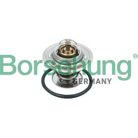 Thermostat, coolant with OEM Number 030 121 113B