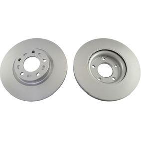 Brake Disc Brake Disc Thickness: 25mm, Num. of holes: 5, Ø: 300mm, Ø: 300mm with OEM Number C26Y3-325XD