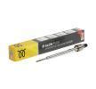 Bujías de precalentamiento OPEL INSIGNIA Sedán 2016 Año CPSG006 CHAMPION WINTER, Tensión: 4,4V