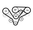 CONTITECH mit Spanndämpfer, Spannrolle CT1015WP2PRO