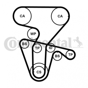 Zahnriemensatz mit OEM-Nummer CT877 CONTITECH
