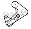 Kit de distribucion CONTITECH CT1107K1 usable en vehículos con corriente de carga de alternador: 163