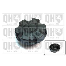 Sealing Cap, coolant tank with OEM Number 17117521071