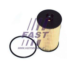 Filtro de aceite FT38066 Aveo / Kalos Hatchback (T250, T255) 1.4 ac 2021