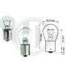 OEM Glühlampe, Blink- / Begrenzungsleuchte DIEDERICHS R für TOYOTA