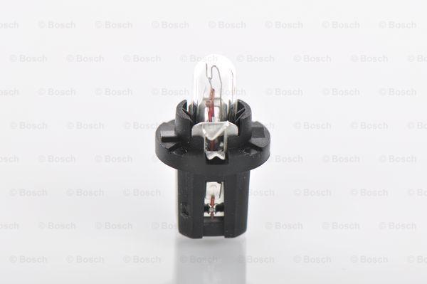 Glühlampe, Instrumentenbeleuchtung 1 987 302 219 BOSCH 12V12WPURELIGHT in Original Qualität