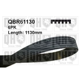 V-Ribbed Belts Length: 1130mm, Number of ribs: 6 with OEM Number 7700114730