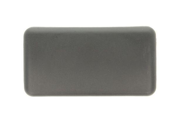 Abdeckung, Außenspiegel RVI-MR-017 PACOL RVI-MR-017 in Original Qualität
