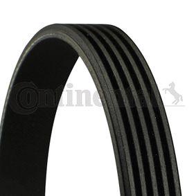 V-Ribbed Belts 5PK694 ELAST 3 (BL) 2.0 MZR MY 2012