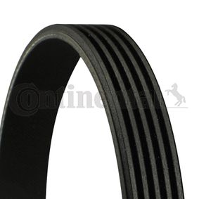 V-Ribbed Belts 5PK716 ELAST 3 (BL) 2.0 MZR MY 2010