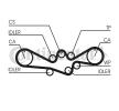 Kfz-Teile günstig bestellen: Zahnriemen CT1050