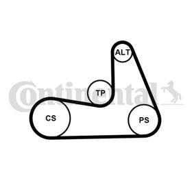 CONTITECH CT1061WP1 оценка
