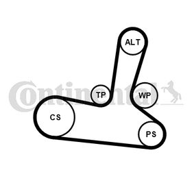 Cinghia dentata (CT1064) per per Cinghia Distribuzione e Kit Cinghia Distribuzione RENAULT SCÉNIC II (JM0/1_) 1.9 dCi dal Anno 06.2003 125 CV di CONTITECH